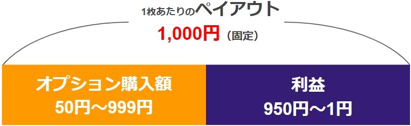 【バイナリーオプション 大損】ペイアウト